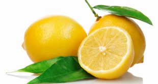 lemon_cut_leaf_white_background_77958_3840x2160
